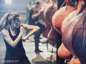 Divergent stills 3