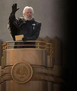 Hunger Games 2 Portrait (9)