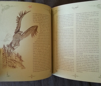 l'encyclopédie du hobbit (4)